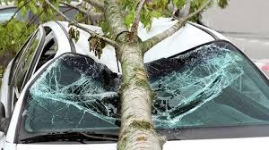 Que faire en cas de dégâts causés par une tempête ?